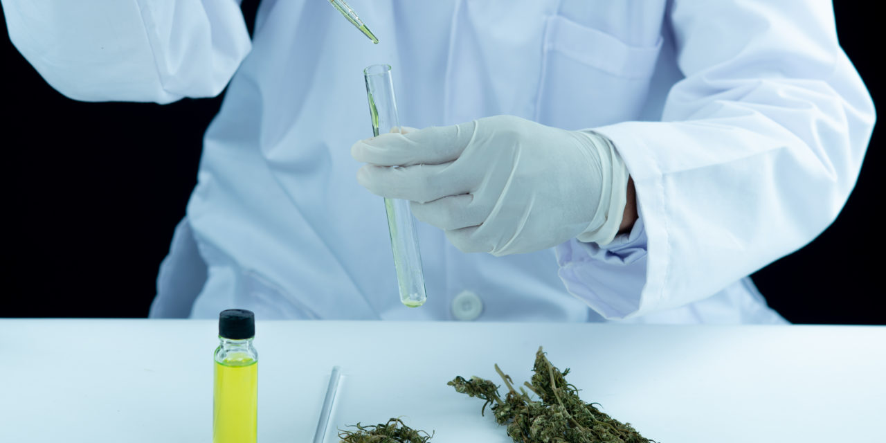 https://www.hidrolab.com/wp-content/uploads/2021/04/doctor-hand-hold-and-offer-to-patient-medical-marijuana-and-oil-1280x640.jpg