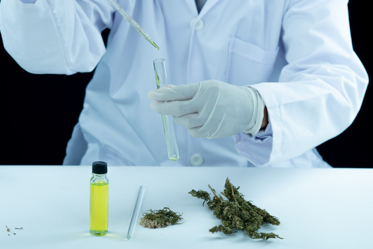 https://www.hidrolab.com/wp-content/uploads/2021/04/doctor-hand-hold-and-offer-to-patient-medical-marijuana-and-oil-1280x854.jpg